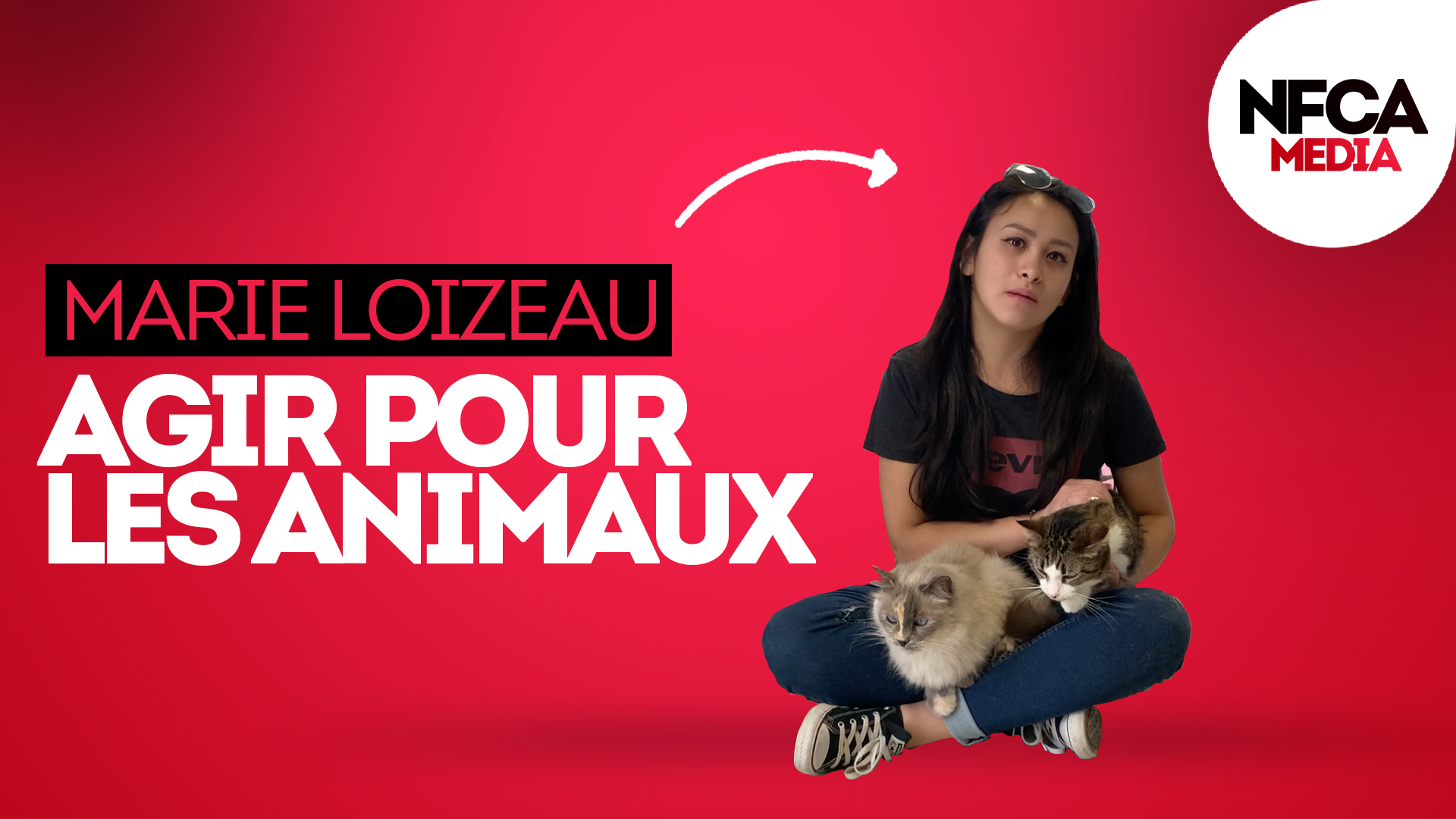 Agir pour nos bêtes à poils ! 🐈